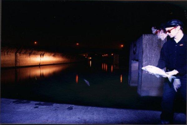 Fotoperformance; Fisch außerhalb seines Lebensraumes
